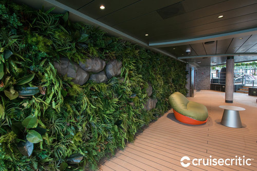 MSC SEASIDE jungle WALL pool lounge PASSIONECREATIVA